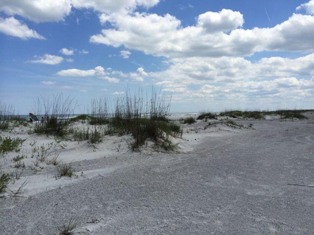 beach-grass-st-aug